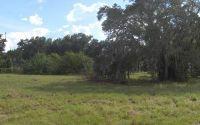 Home for sale: 426 Ohio St., Lake Placid, FL 33852