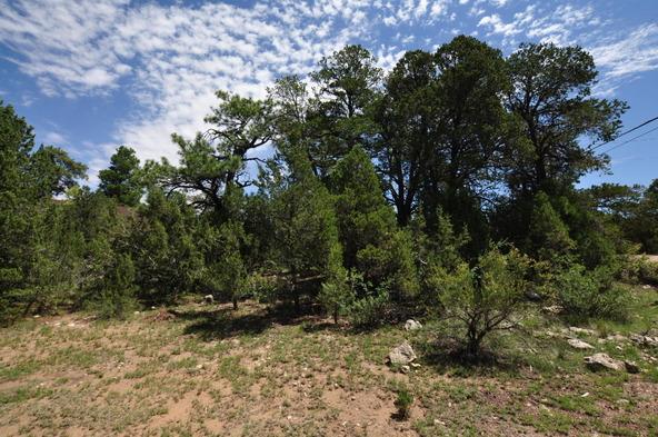 3146 Ranch Rd., Overgaard, AZ 85933 Photo 8