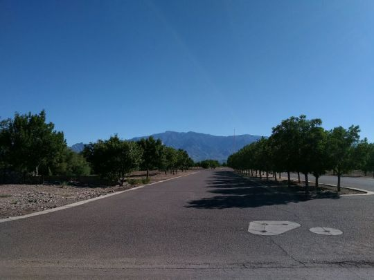 6505 W. Palo Verde Ln., Pima, AZ 85543 Photo 1