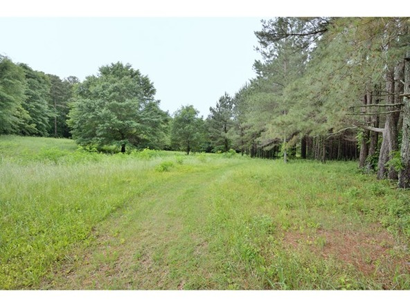 8385 Allsboro Rd., Cherokee, AL 35616 Photo 32