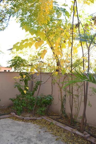 903 N. Desert, Tucson, AZ 85711 Photo 12
