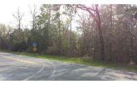 Home for sale: 5066 S.W. Birley Avenue, Lake City, FL 32025