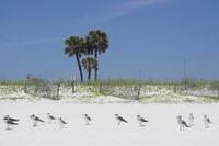 Home for sale: 856 Scallop 604 Ct., Fort Walton Beach, FL 32548