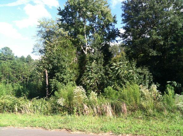 424 Shelby Ann Ln., Rock Hill, SC 29732 Photo 5