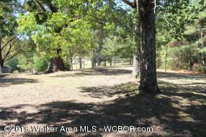 1814 N. Old Russellville Rd., Jasper, AL 35503 Photo 9