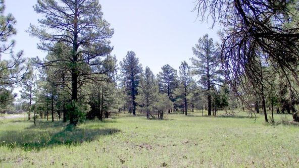 2693 Lazy E. Rd., Williams, AZ 86046 Photo 7