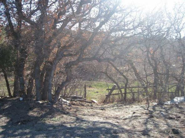County Rd. 419, Tract A, Gallina, NM 87017 Photo 11