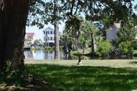 Home for sale: 318 Lakeside Dr., Surfside Beach, SC 29575