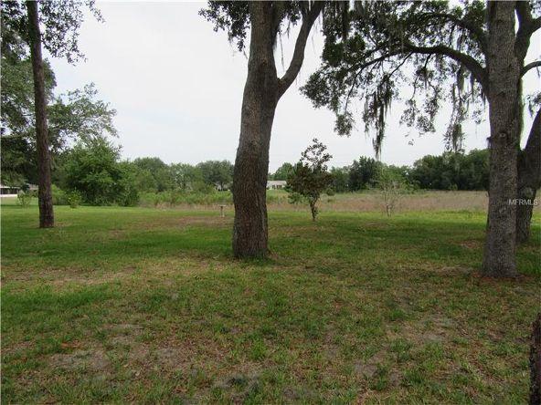 25544 Belle Helene, Leesburg, FL 34748 Photo 22