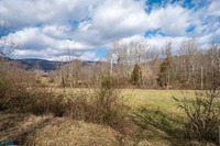 Home for sale: Shiffletts Mill Rd., Free Union, VA 22940