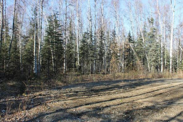 14890 E. Gold Miners Way, Willow, AK 99688 Photo 3