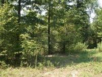 Home for sale: 0 White Oak Ridge Rd., Waverly, TN 37185