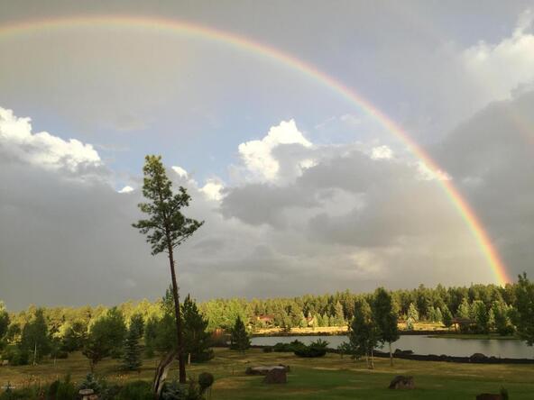 9584 Sierra Springs Way, Pinetop, AZ 85935 Photo 22