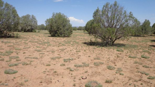 261 Juniperwood Ranch Lot 261, Ash Fork, AZ 86320 Photo 17