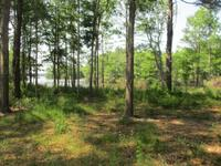 Home for sale: Lot 159a Wolfs Thick Rd., Cordele, GA 31015