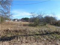 Home for sale: 13 Jarmon Ln., Leighton, AL 35646