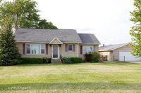 Home for sale: 1980 West Grand Ridge Rd., Mazon, IL 60444