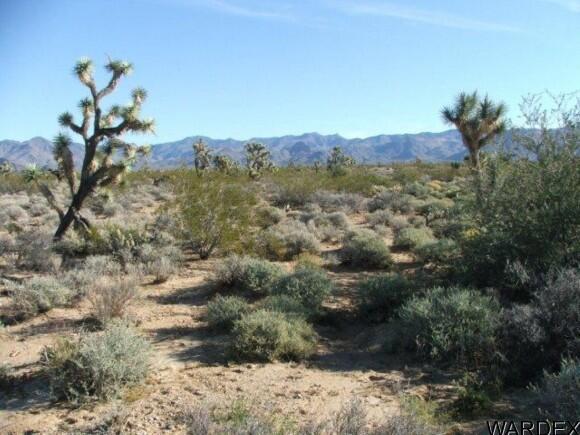 3529-A Arroyo Rd., Yucca, AZ 86438 Photo 25
