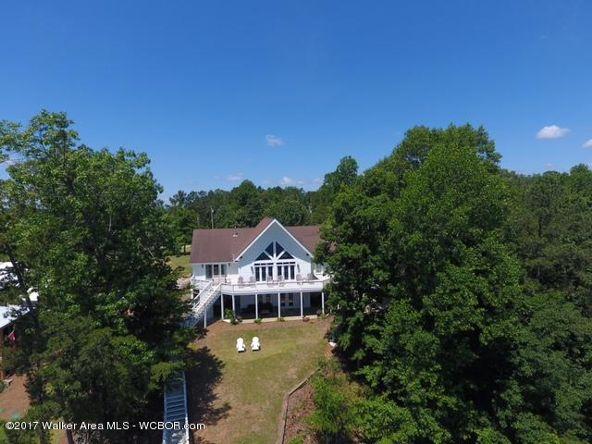 79 County Rd. 4019, Crane Hill, AL 35053 Photo 40