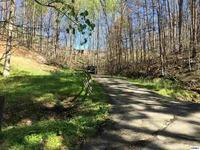 Home for sale: 807 N. Woodland Dr., Gatlinburg, TN 37738