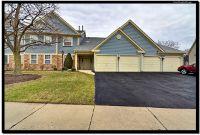 Home for sale: 62 Larch Ct., Schaumburg, IL 60193
