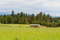 Home for sale: 1535 W. Ballard, Spokane, WA 99208