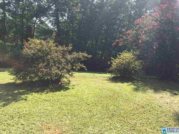17462 Hwy. 174, Pell City, AL 35125 Photo 7