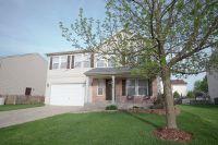 Home for sale: 25413 Elam Dr., Manhattan, IL 60442
