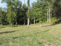 Home for sale: 9 Stoneridge Lii, Williamstown, WV 26187
