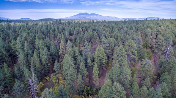 8100 W. Dk Ranch Rd., Flagstaff, AZ 86005 Photo 3