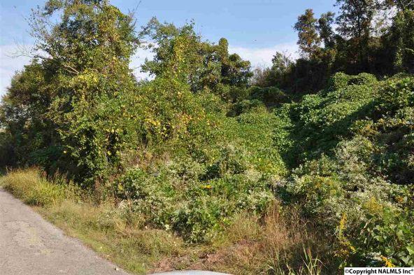 521 Nesmith Rd., Guntersville, AL 35976 Photo 1