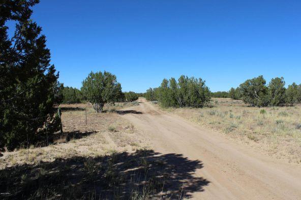 7209 N. Hwy. 191 --, Sanders, AZ 86512 Photo 7