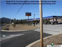 Home for sale: 5703 U S. Hwy. 431, Brownsboro, AL 35741
