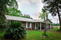 Home for sale: 650 Treeline Rd., Grand Ridge, FL 32442