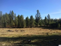 Home for sale: N./A Forest Service Rd. #377, Bovill, ID 83806