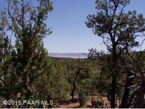 1024 Sierra Verde Ranch, Seligman, AZ 86337 Photo 15