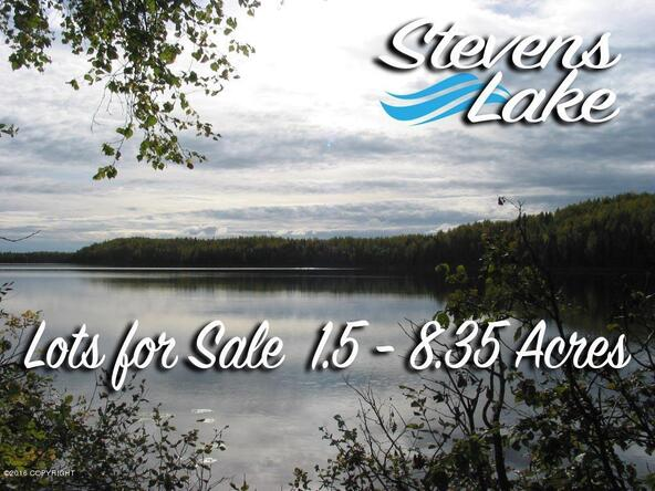21312 W. Bow Tie Loop, Willow, AK 99688 Photo 21