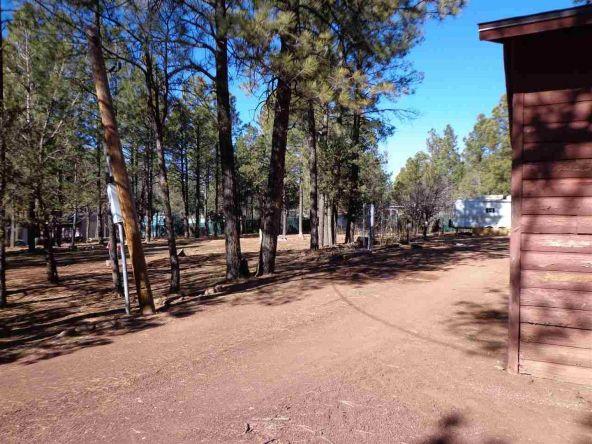 3530 Petes Retreat, Lakeside, AZ 85929 Photo 10