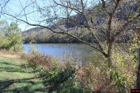 Home for sale: Lot 1 Plane Tree Ln., Mountain Home, AR 72653