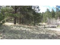 Home for sale: 387 Arapahoe Creek Dr., Florissant, CO 80816