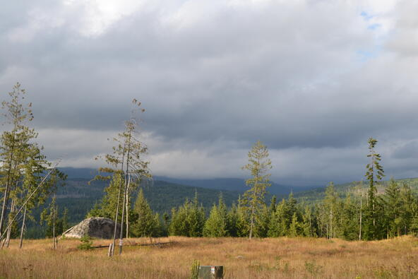 Lot 2 & 3 Rising Hawk Ridge, Sandpoint, ID 83864 Photo 17