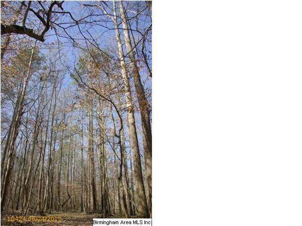 4 Horton Mill Rd., Oneonta, AL 35121 Photo 41