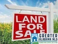 Home for sale: 6783 Old Springville Rd., Pinson, AL 35126