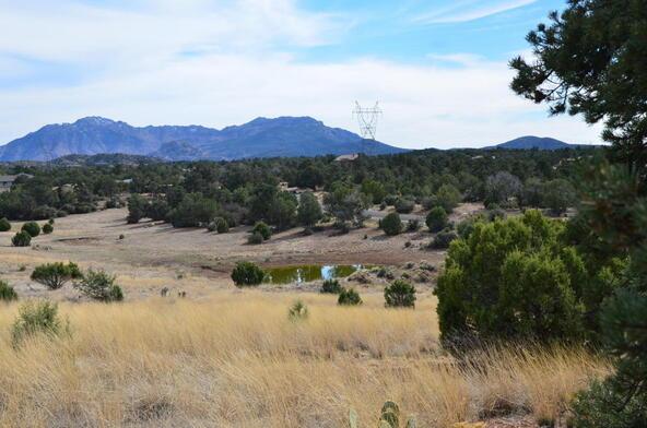 13991 N. Grey Bears Trail, Prescott, AZ 86305 Photo 19