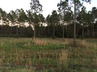 Home for sale: Lot 4 Indigo Ln., Jesup, GA 31545