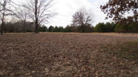 Home for sale: Lot B Woodfield Dr., Highlandville, MO 65669