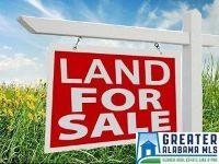 Home for sale: 0 Homestead Dr., Cropwell, AL 35054