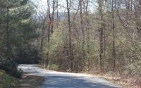 Home for sale: Moore Hill Rd., Hayesville, NC 28904