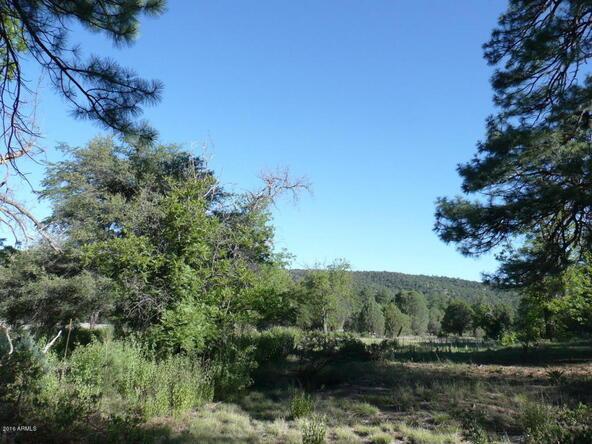 200 E. Cline Crossing, Young, AZ 85554 Photo 60