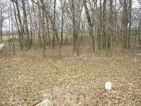 Home for sale: Lot 20 N.W. County 1481 Rd., Archie, MO 64725